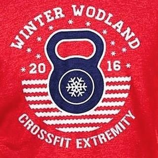 Winter WODland