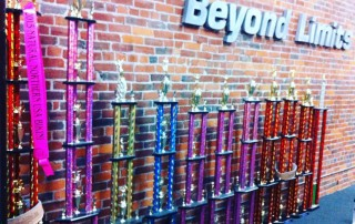 Group Of Beyond Limits Trophies.